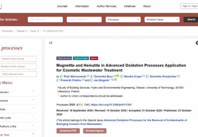 Magnetite and Hematite in Advanced Oxidation Processes Application for Cosmetic Wastewater Treatment