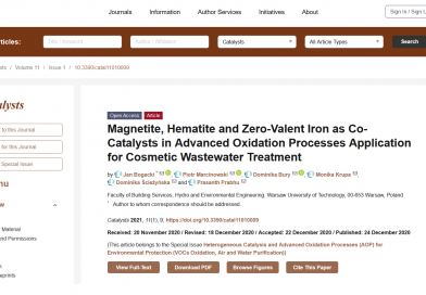 Magnetite, Hematite and Zero-Valent Iron as Co-Catalysts in Advanced Oxidation Processes Application for Cosmetic Wastewater Treatment